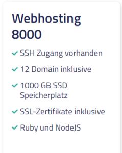 Netcup Webhosting 8000