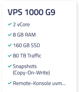 Netcup VPS 1000 G9