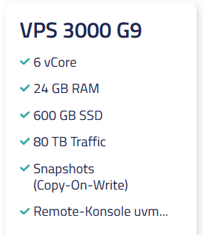 Netcup VPS 3000 G9