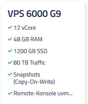 Netcup VPS 6000 G9