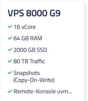 Netcup VPS 8000 G9